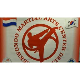 Taekwondo Martial Arts Center Delft