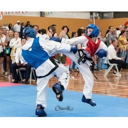 Logo of CHITF NSW Taekwon-Do Championship