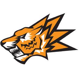 Tiger Division