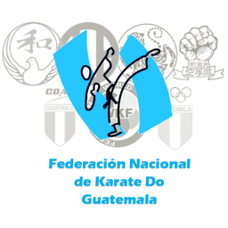 Logo of CAMPEONATO NACIONAL INDEPENDENCIA