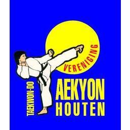 Taekwon-do vereniging Taekyon Houten